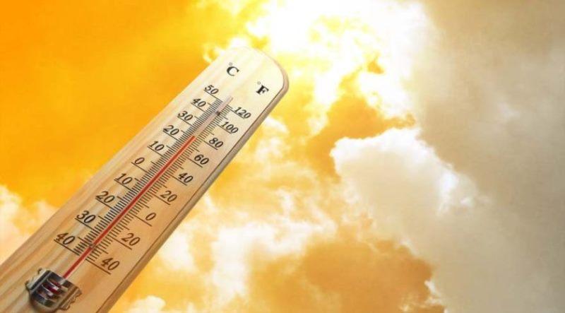 """Результат пошуку зображень за запитом """"estate caldo"""""""